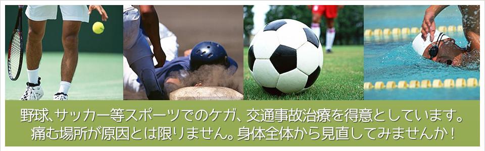 野球、サッカー等スポーツでのケガ、交通事故治療を得意としています。     痛む場所が原因とは限りません。身体全体から見直してみませんか!